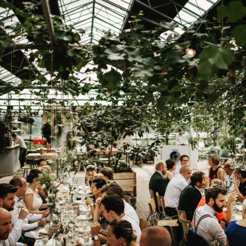 In de kas bruiloft unieke locatie Winssen Gelderland